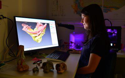 The Monash 3D Printed Anatomy Series